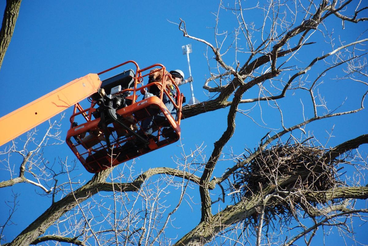 Eaglecam installation
