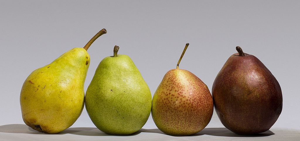 Good: Fruits