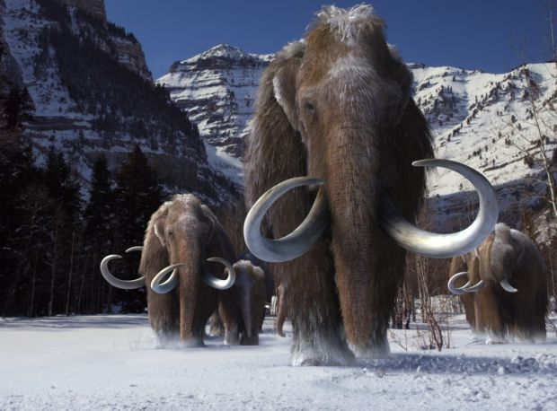 CGI movie at Putnam shows 'Ice Age' was worse | Movies | qctimes com