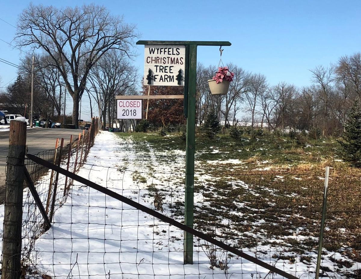 Christmas Tree Farm In Moline Closed For The Season: 'We
