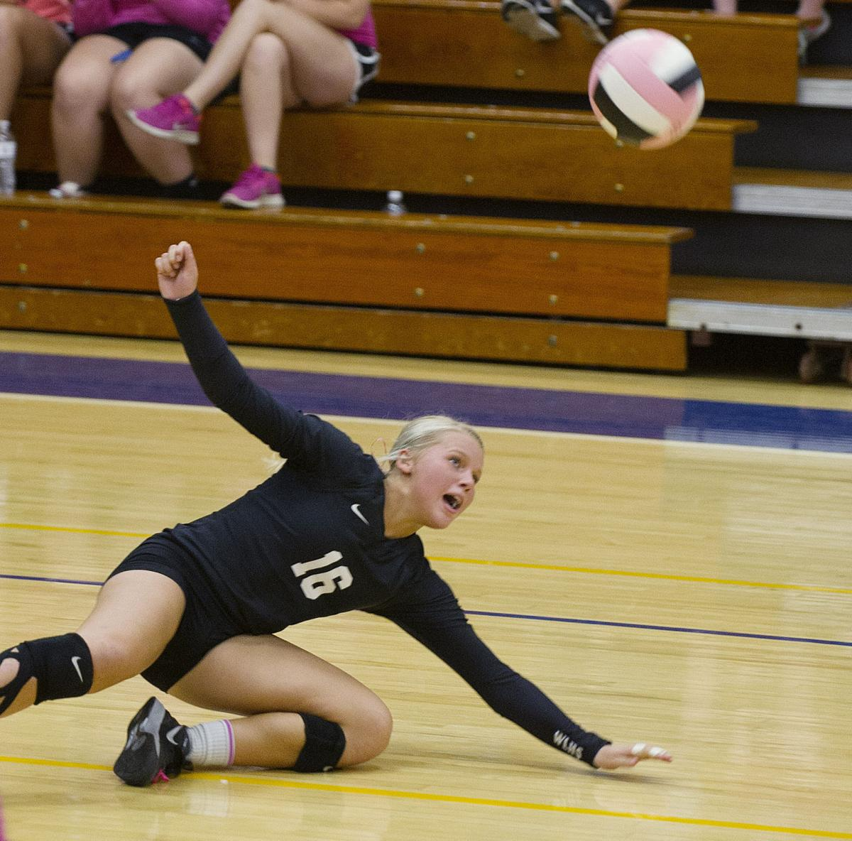 Iowa area volleyball outlook: Teams, individuals to watch   High ...