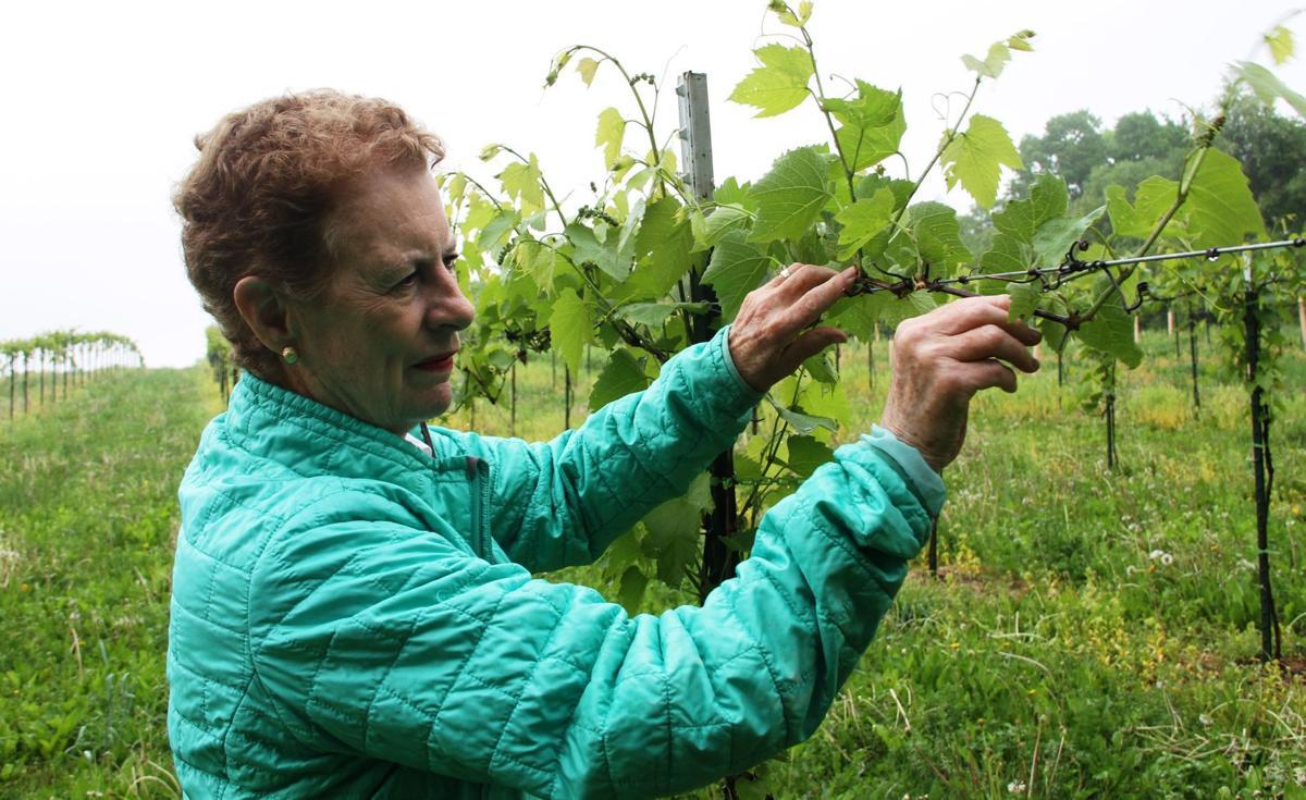053018-qct-fea-winery08.JPG