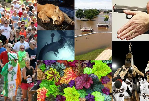 Top stories of 2013