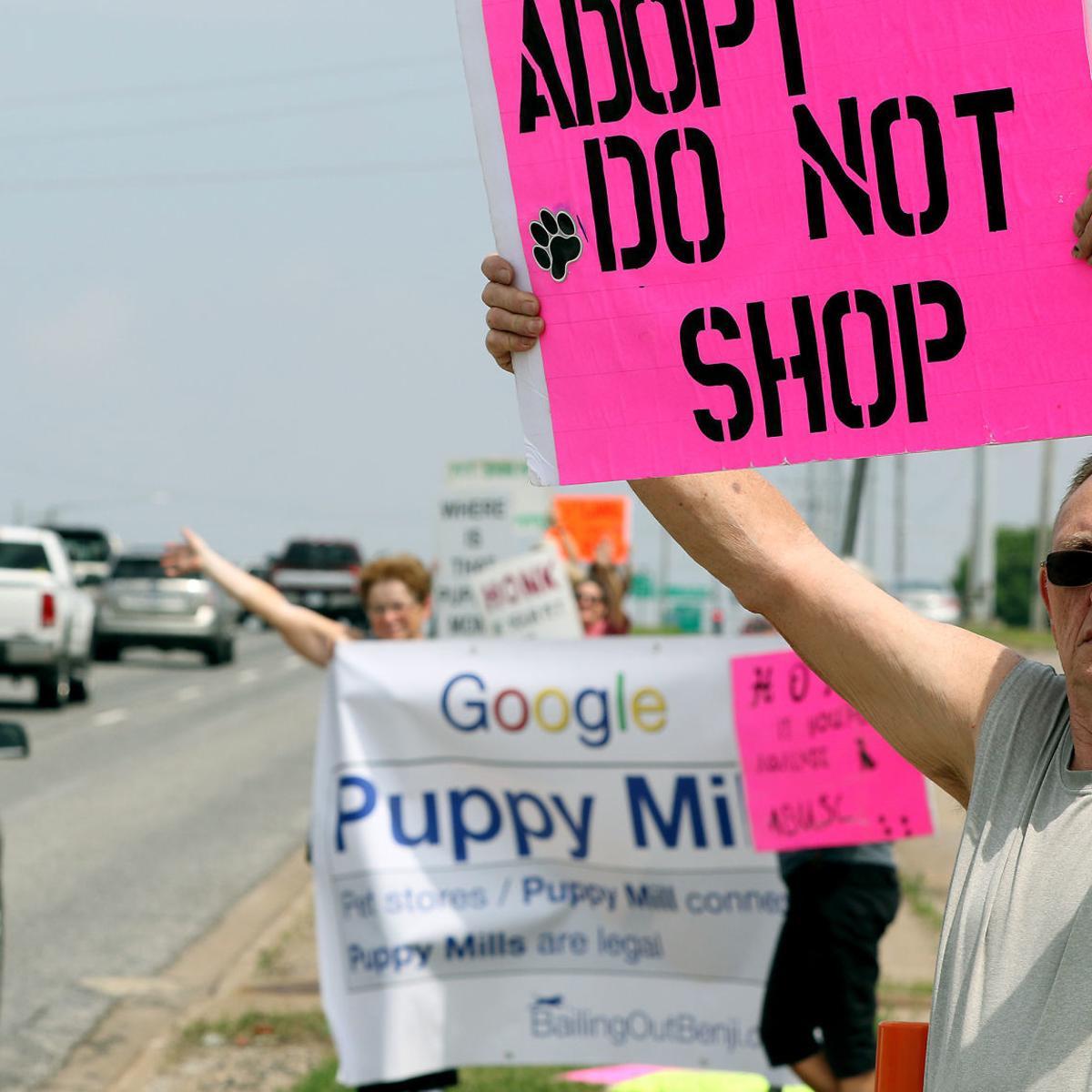 Animal cruelty rankings: Illinois good, Iowa bad | Barb