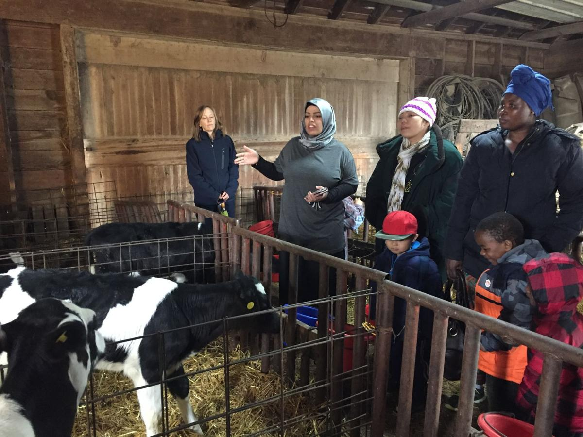 Adult language learners on Blue Grass dairy farm