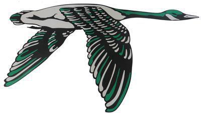 Wethersfield logo
