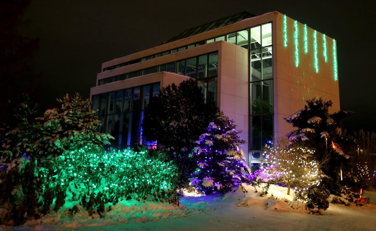 112718-botanical-lights-015