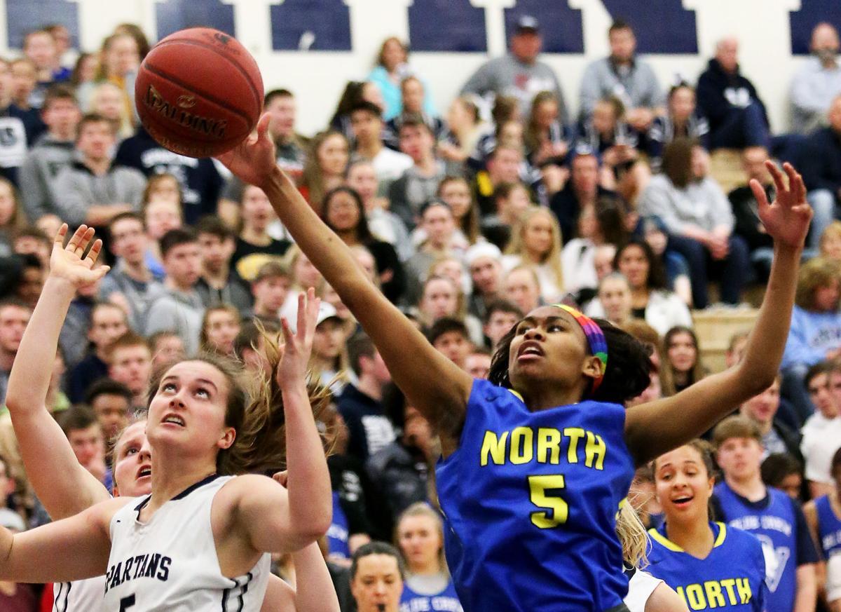 2017 Quad-City Times All-Metro girls basketball team | High School ...