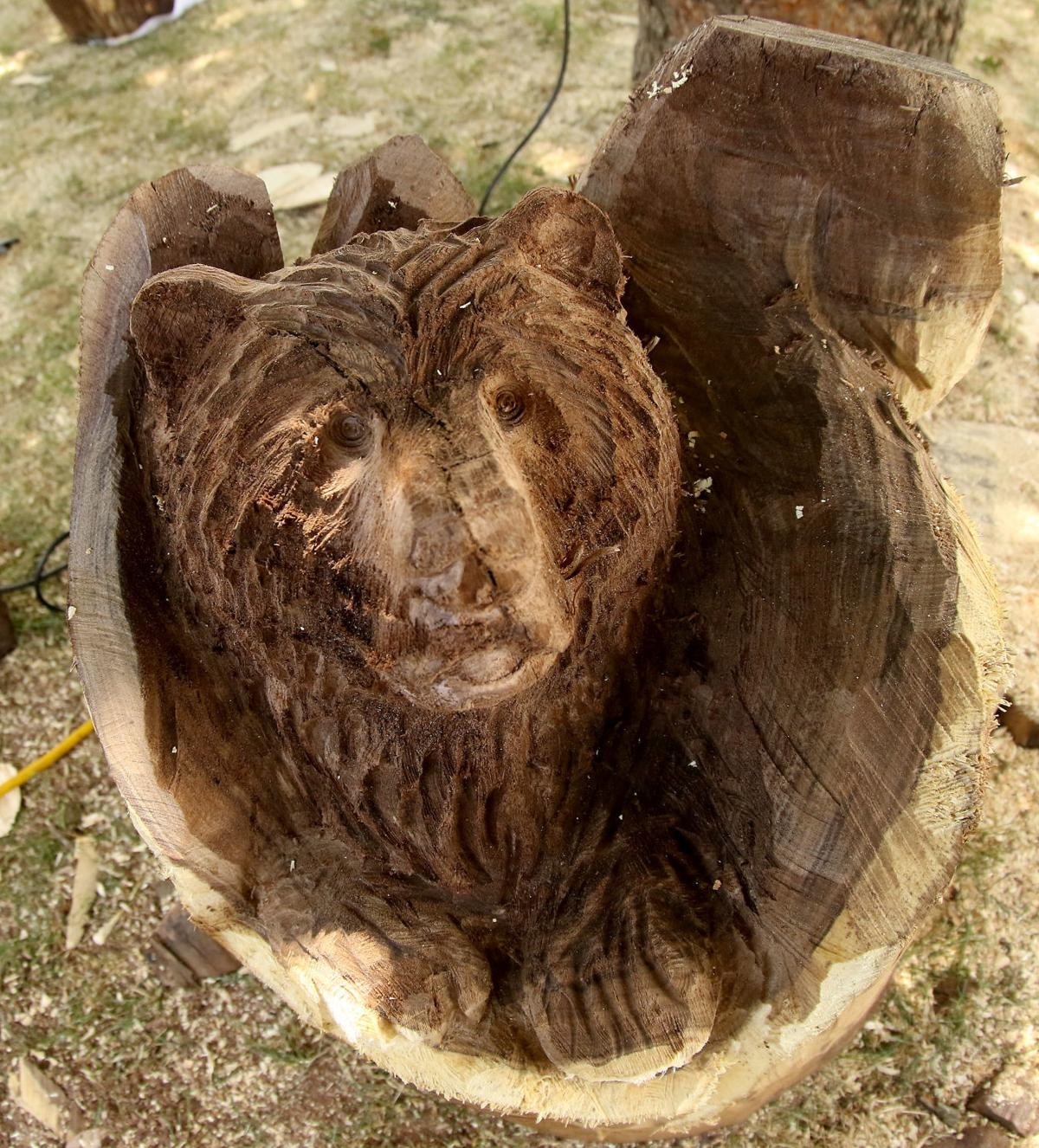 Visiting chainsaw artist carves dead ash trees into monumental
