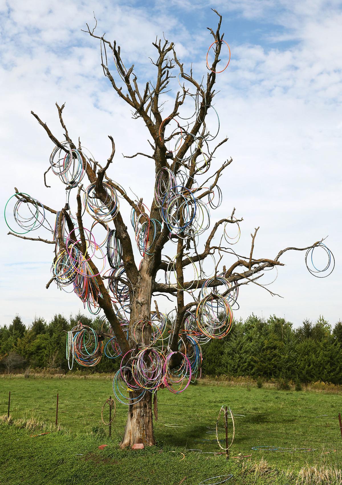 102518-Hula-Hoop-Tree-001
