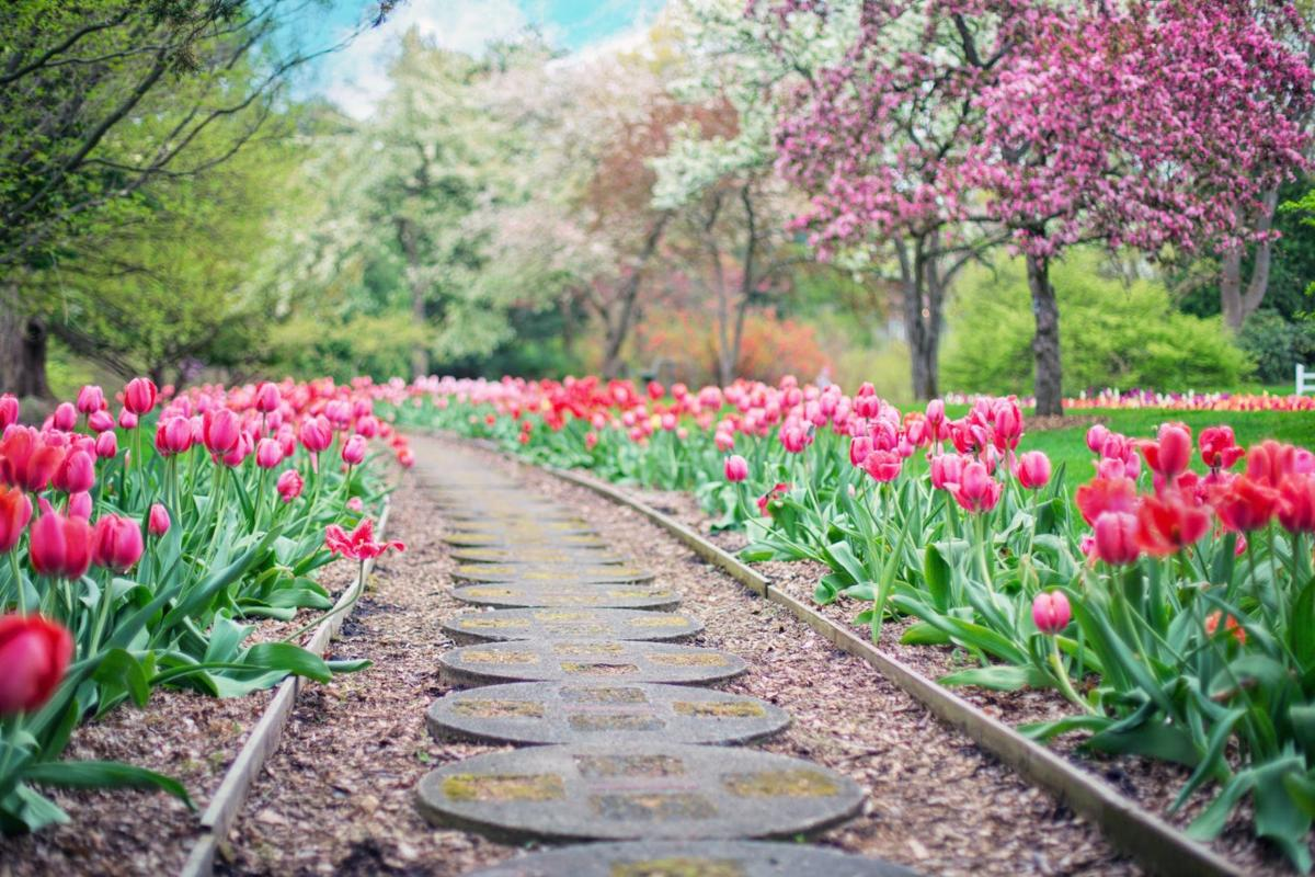 Choosing The Best Type Of Mulch For Your Flower Bed Home
