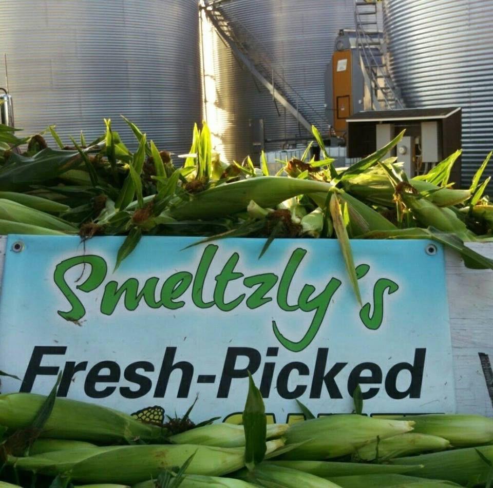 Smeltzly's