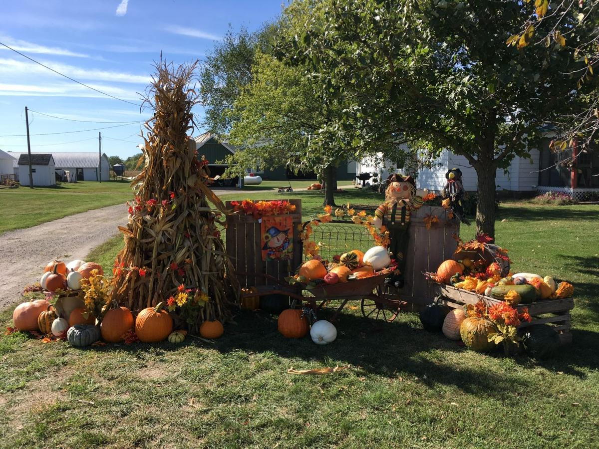 harvest display sprouts near grandview home and garden qctimes com