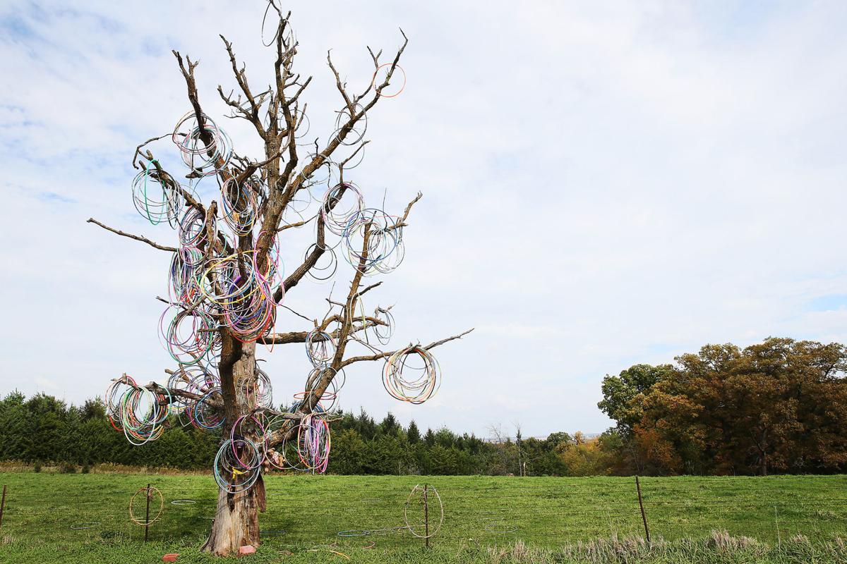102518-Hula-Hoop-Tree-002