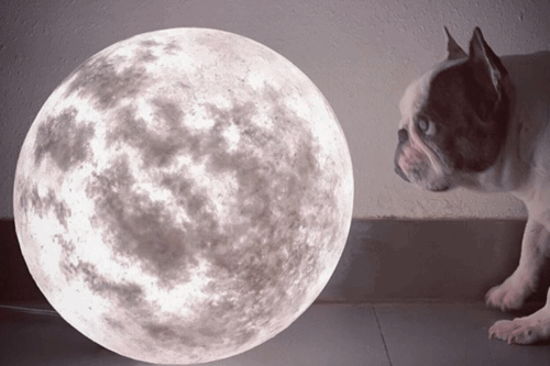 These Beautiful Lamps Look Just Like The Moon