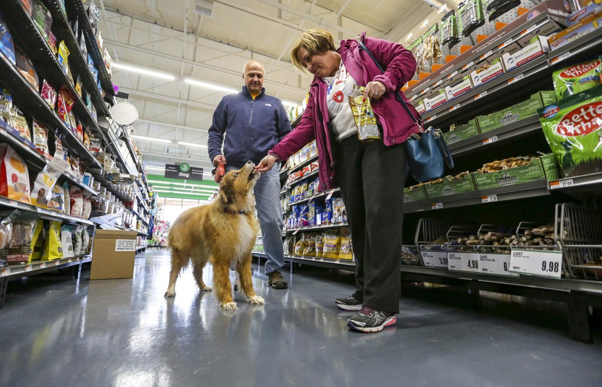 Pet Supplies Plus makes splash in Davenport | Economy