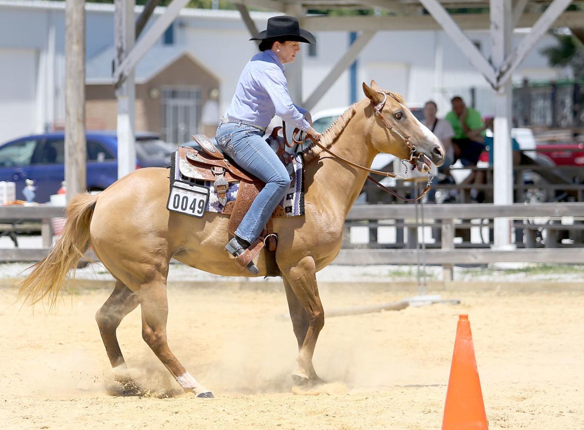 070818-qct-Horse-Show-003