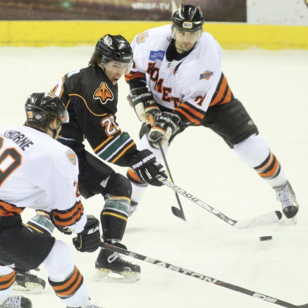 Hockey Mallards Ft. Wayne