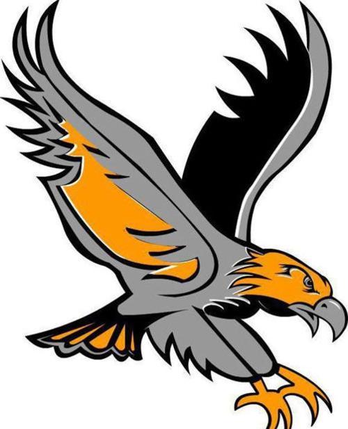 Easton Valley River Hawk logo