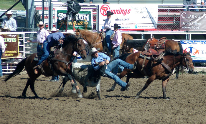 Lauing Wins Tiedown At Sdhsra State Finals Sports
