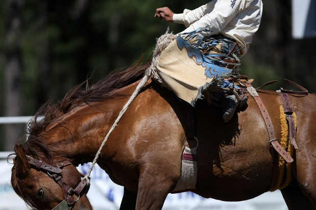 Crazy Horse Stampede Rodeo Black Hills 2 Go