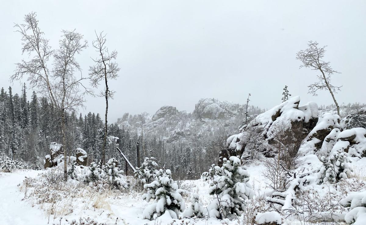 Snow in Custer State Park