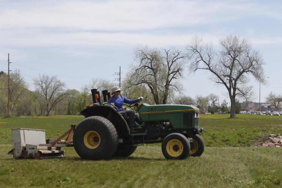 City claims new grass will lessen runoff, save money in Founders Park