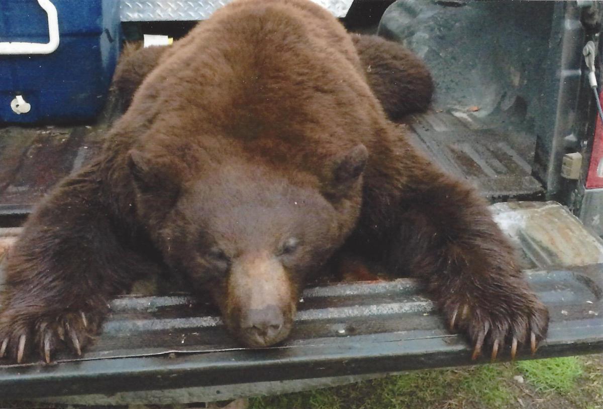 061516-bcp-bearhunt2