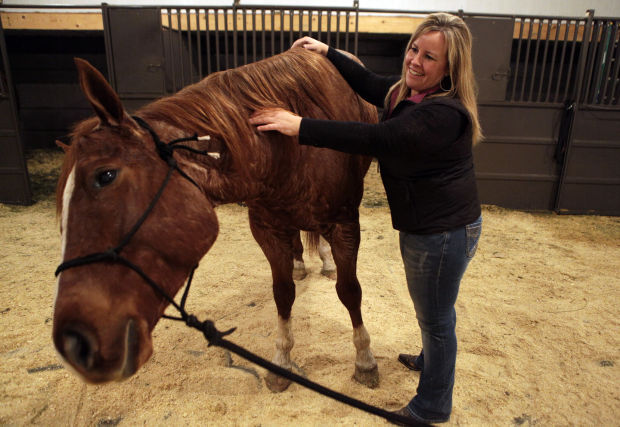 Massage Therapists Stay In Touch With Horses