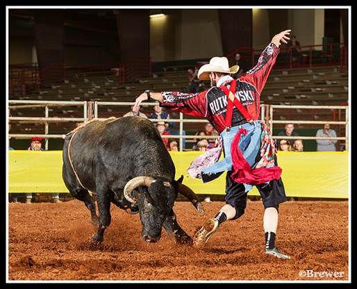Rodeo bullfighting (copy) (copy)