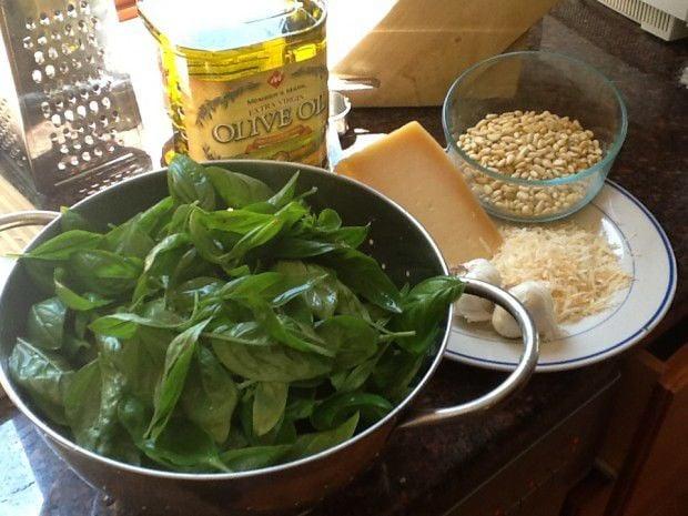 Pesto makings