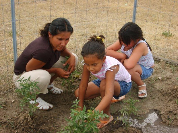 Roots and Shoots program.JPG