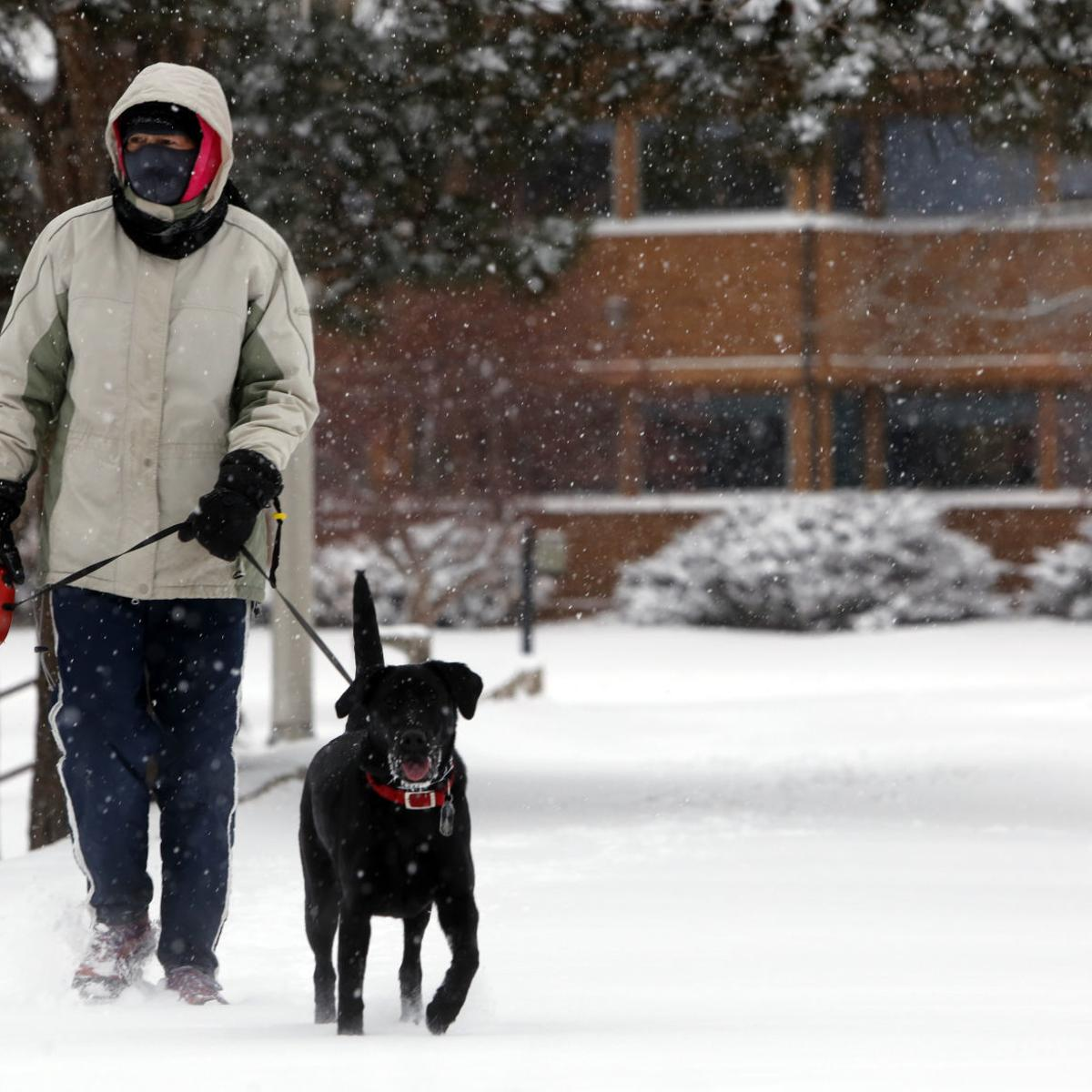 Latest snowfall total: 10 inches reported in Sturgis; motorists ...