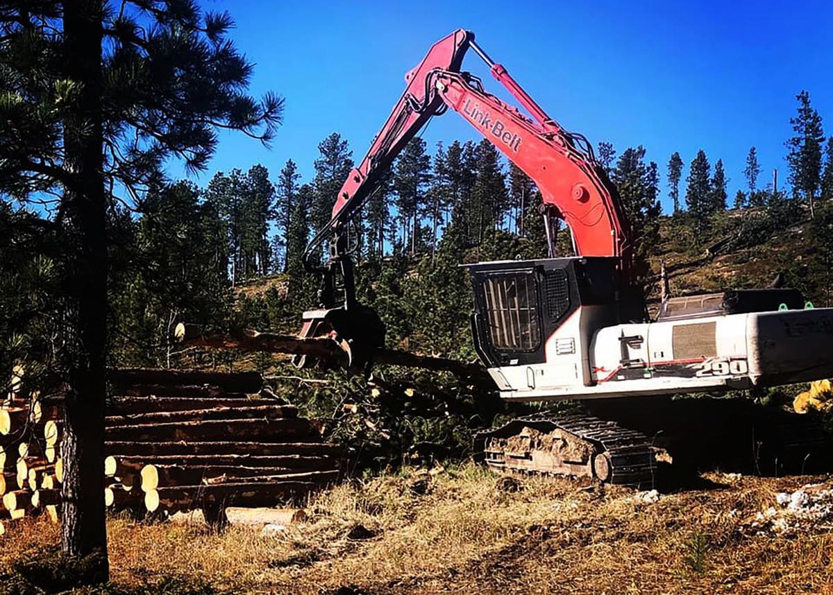 USFS Black Hills National Forest GTR (copy)