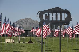 Buffalo Chip to cease sales tax collections during court appeal