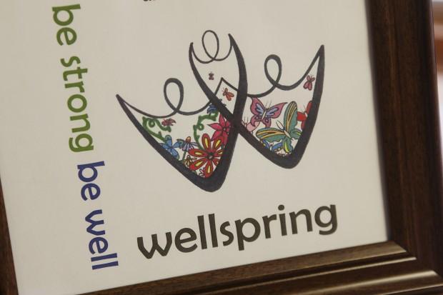 020613-nws-wellspring2.JPG