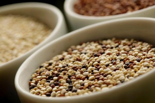 040512.quinoa03.jpg