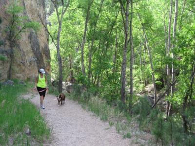 Little Elk Creek Canyon