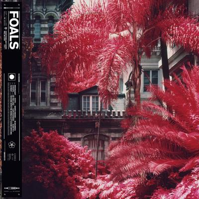 Music Review - Foals