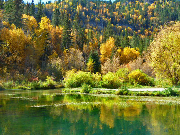 Spearfish Canyon color (copy)