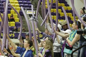 For Bronc fans, getting to state tournament half the fun