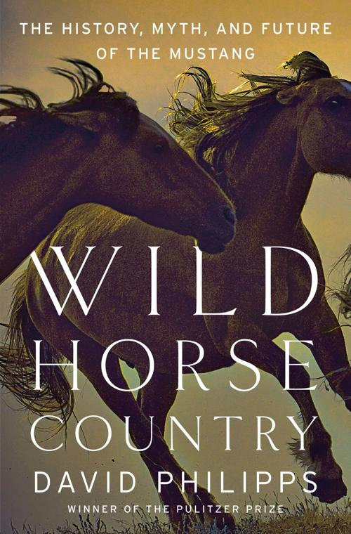 "Cover, ""Wild Horse Country"""