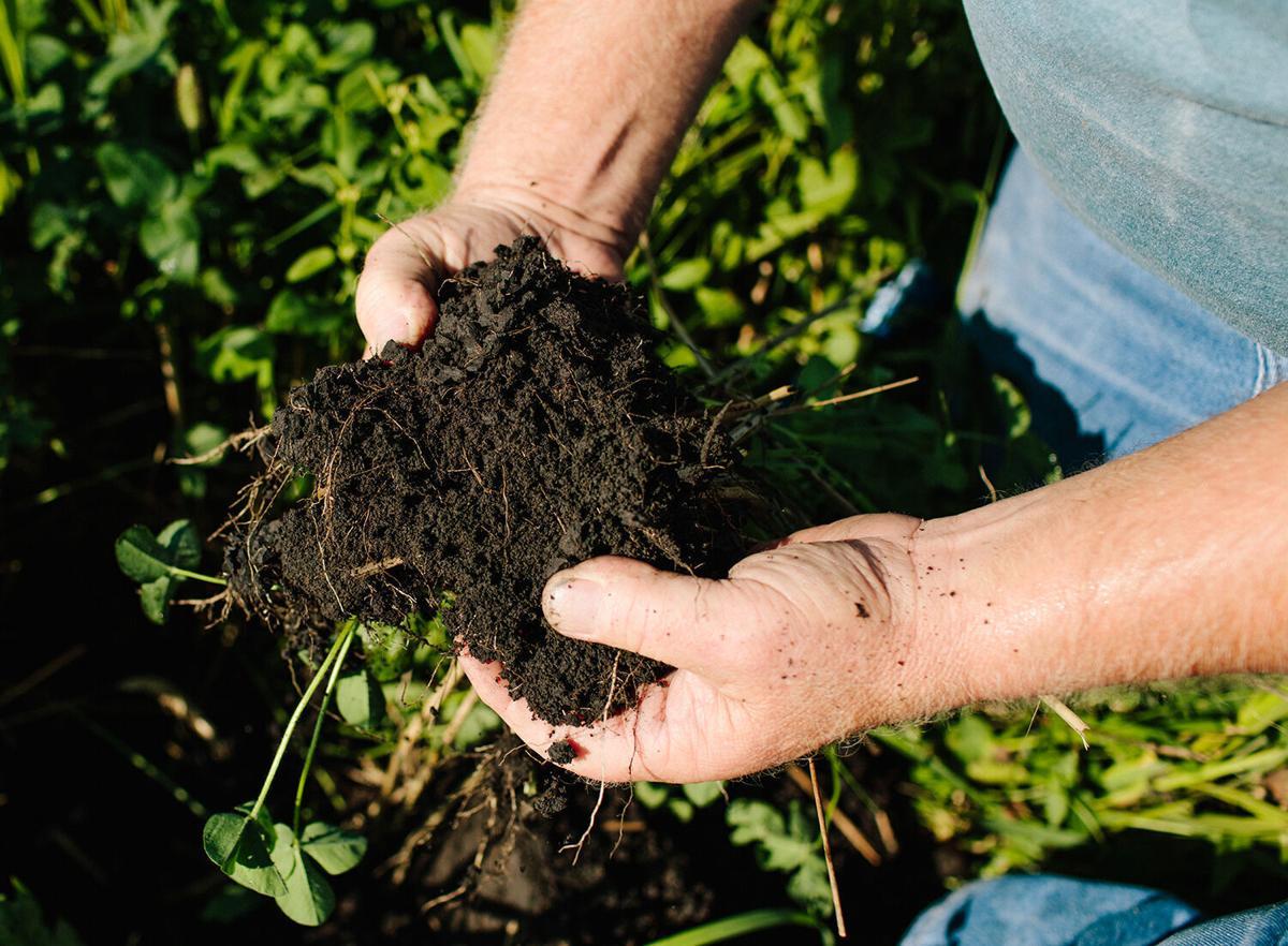 Janie's Farm soil