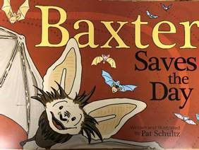 Baxter Saves the Day book cover