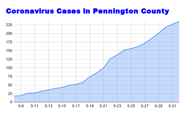 Cases in Pennington County