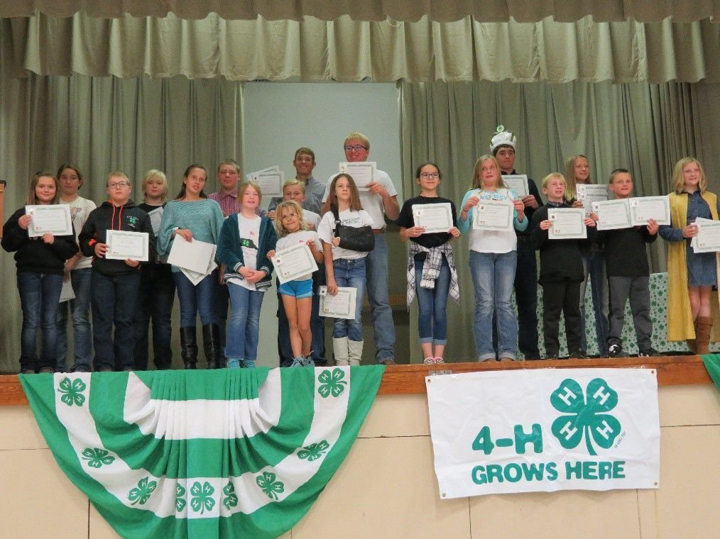 4H-All youth