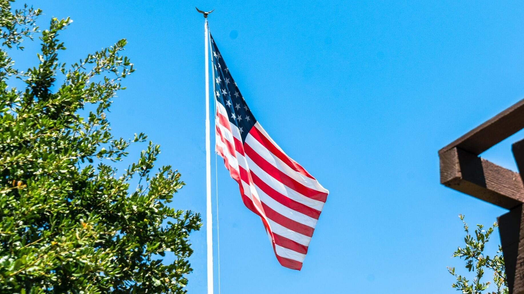 Veterans Day 2020 Where To Get Free Or Discounted Meals On Wednesday Food Rapidcityjournal Com