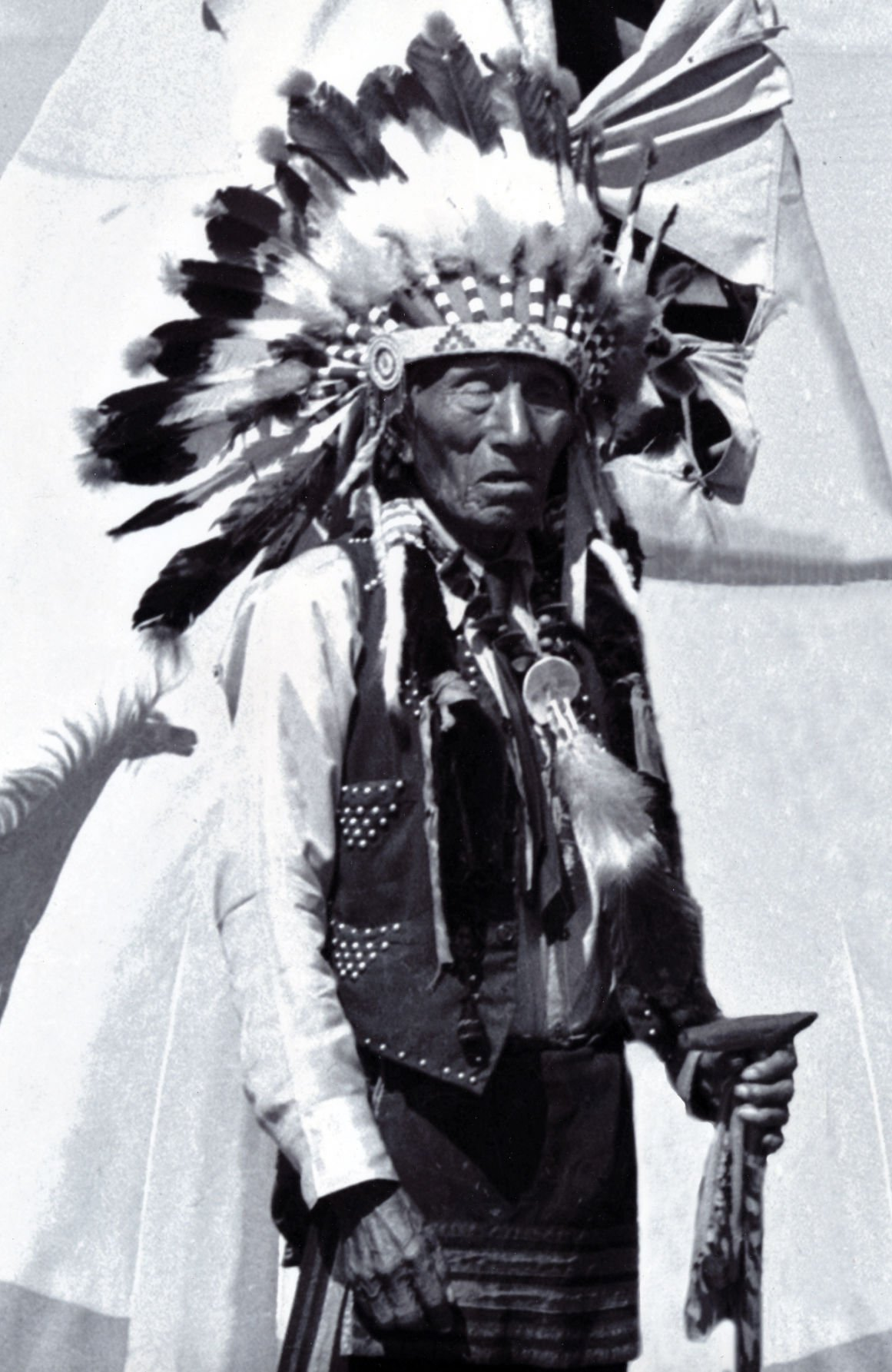 The circle of life black elk
