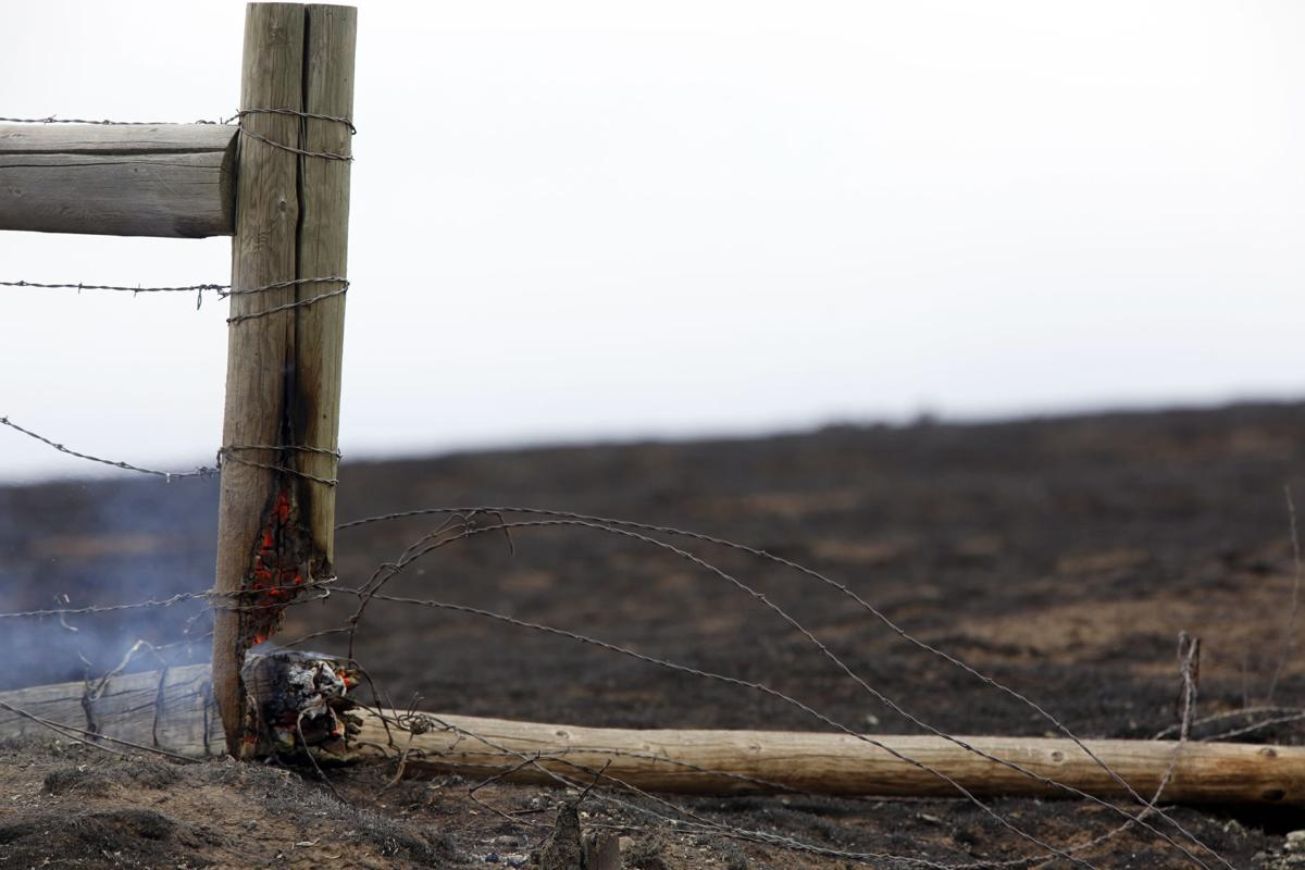 Prairie fire east of Rapid City scorched 48 square miles and killed ...