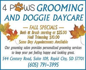 4 Paws Grooming and Doggie Daycare